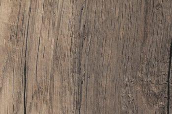 grainwood-olmo-corteccia